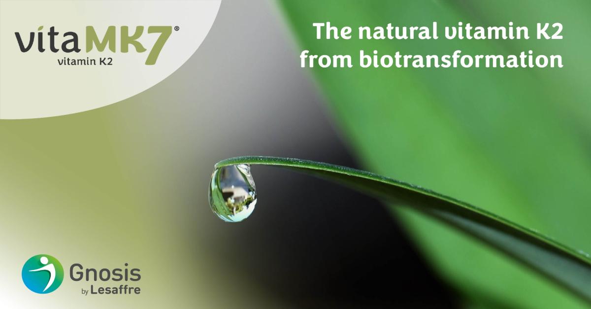 natural-vitamin-K2-biotransformation-vitamk7